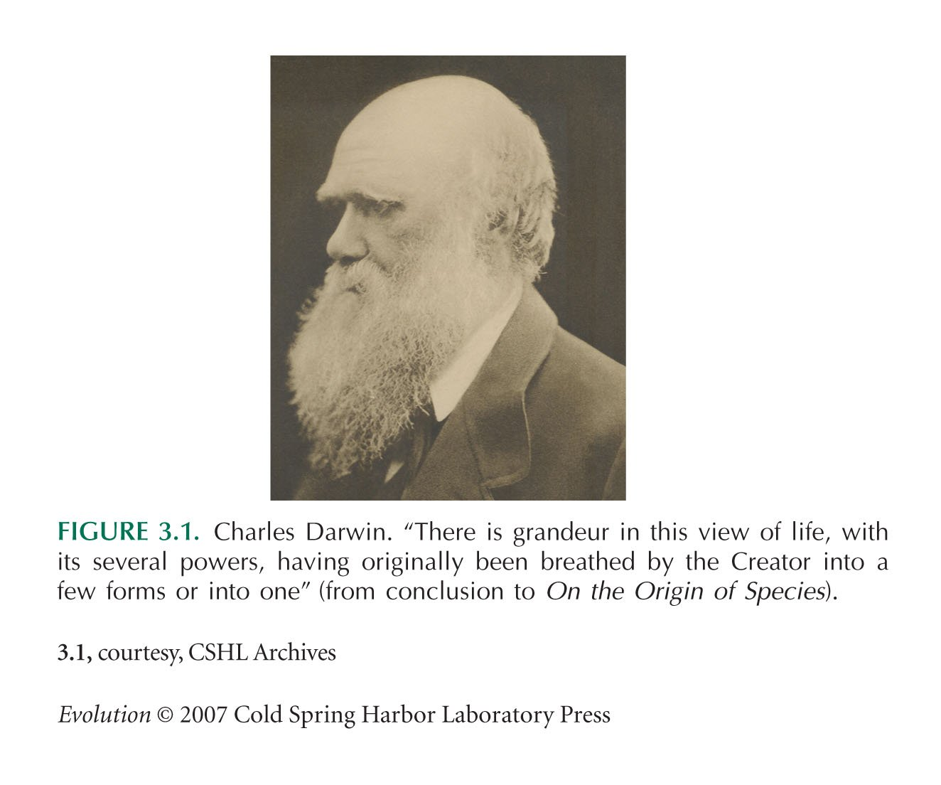 Charles darwin evolution pictures The Voyage of the Beagle - Wikipedia
