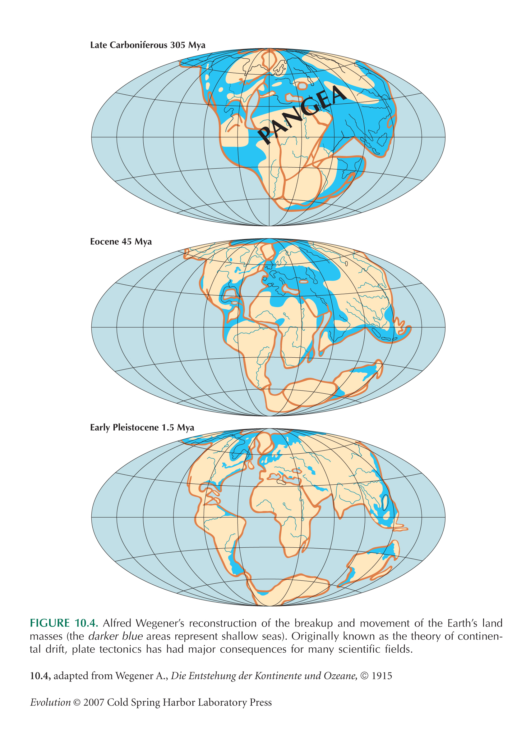 evolution of land masses